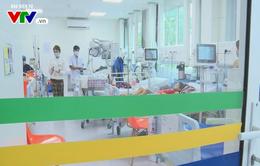 TP.HCM: 9 trường hợp tử vong do sốt xuất huyết
