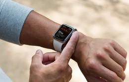 Apple Watch Series 5 sẽ hỗ trợ tính năng điện tâm đồ tại nhiều quốc gia
