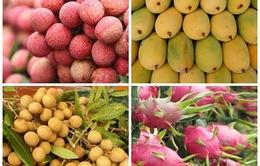 Những trái cây Việt đã được xuất khẩu vào Mỹ