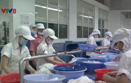 Việt Nam chi trên 1,7 tỷ đô la Mỹ nhập khẩu thủy sản trong năm 2018