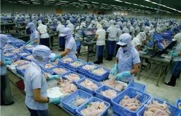 Năm 2019, xuất khẩu cá tra nỗ lực đạt 2,4 tỷ USD