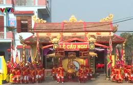 Sôi động Lễ cầu ngư đầu năm của người dân Quảng Bình