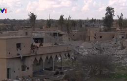 IS chỉ kiểm soát chưa đầy 1 km2 đất tại Syria