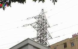 Hà Nội đảm bảo an toàn hành lang lưới điện dịp Tết