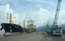 Bộ GTVT hủy hai văn bản bán cảng Quy Nhơn