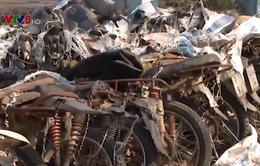 Hàng trăm xe máy chở gỗ lậu khó bán thanh lý
