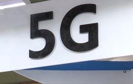 EU có thể cấm những nhà cung cấp dịch vụ mạng 5G gây rủi ro an ninh