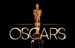 Oscar 2019: Viện Hàn lâm bình chọn người chiến thắng như thế nào?
