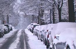 Mỹ: Bão tuyết ảnh hưởng hơn 150 triệu người