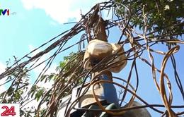 6.500 hộ dân ở Đăk Nông phải dùng điện câu móc