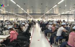 Doanh nghiệp tăng ưu đãi thu hút người lao động