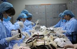 Hơn 100 người tất bật điều chế máu phục vụ người bệnh