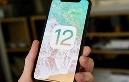 iOS 12 đã được cài đặt trên 80% thiết bị chạy iOS