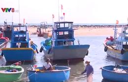 Bình Thuận: Cảng cá nguy cơ bỏ hoang vì tắc luồng lạch
