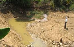 Hạn hán trên diện rộng ở Đắk Nông