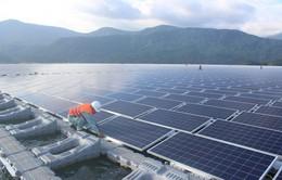 Làm việc xuyên Tết, đẩy nhanh tiến độ dự án năng lượng sạch khu vực miền Nam