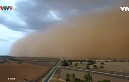 Bão cát lạ quét qua Australia