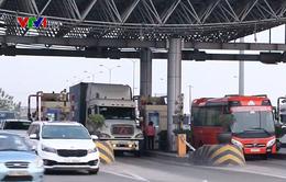 Cao tốc Cầu Giẽ - Ninh Bình đạt kỷ lục 100.000 xe/ngày trong dịp Tết Kỷ Hợi