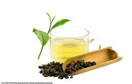 Chiết xuất từ trà ô long có thể chống lại bệnh ung thư vú
