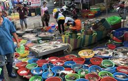 Giá cả thực phẩm tại các chợ TP.HCM ổn định