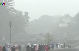 Giá rét bất thường ở Tokyo, hơn 140 chuyến bay bị hủy