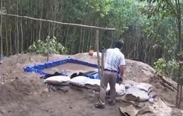 Tái diễn nạn khai thác vàng trái phép tại Bồng Miêu