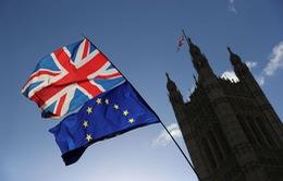 Anh chưa có kế hoạch đàm phán thêm với EU về điều khoản Brexit