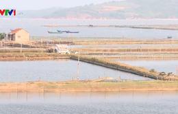 Phú Yên: Khảo sát, xử lý hành vi lấn chiếm đầm Ô Loan