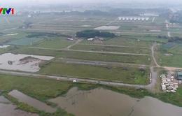 Thủ tướng yêu cầu Hà Nội kiểm tra 2.000 ha đất bỏ hoang tại Mê Linh
