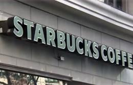 Starbucks phục vụ sữa từ yến mạch