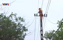 Hiểm nguy từ vi phạm hành lang an toàn lưới điện cao áp
