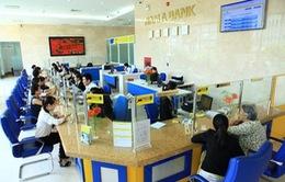 """Ngân hàng Nam Á lên tiếng về """"lùm xùm"""" tranh chấp cổ phần"""