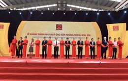 Tập đoàn Hoa Sen tiếp tục nâng cao năng lực sản xuất, tăng trưởng xuất khẩu