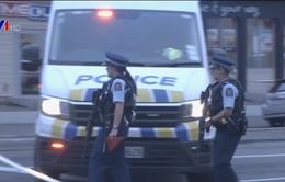 New Zealand rà soát luật kiểm soát súng đạn