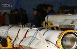 Nhật Bản phát triển tên lửa hành trình chống hạm