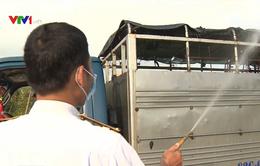 Bạc Liêu tăng cường phòng chống dịch tả lợn châu Phi