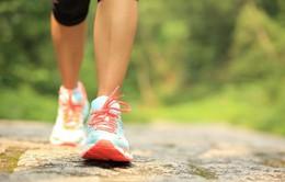 Đi bộ có thể giảm nguy cơ tử vong do đau tim, đột quỵ hoặc ung thư