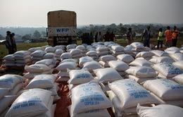 Hàng trăm người ở Uganda ngộ độc do thực phẩm cứu trợ