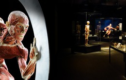 Triển lãm bộ phận cơ thể bằng công nghệ 3D