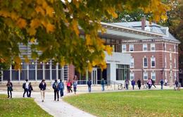 Nhiều học sinh giỏi khởi kiện các trường đại học Mỹ