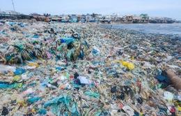 Câu chuyện về hơn 3.000 bức ảnh bóc trần sự thật về ô nhiểm môi trường biển