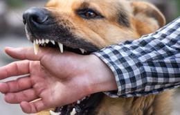 Người đàn ông tử vong sau 3 tháng bị chó dại cắn