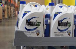 Xem xét ngưng nhập khẩu thuốc trừ cỏ chứa Glyphosate