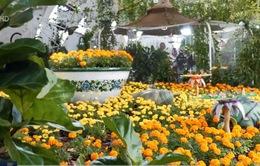 Độc đáo vườn bướm ở Dubai