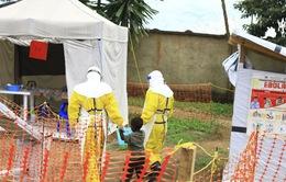 Congo: Gần 2/3 trong số 1.000 ca nhiễm virus Ebola tử vong trong vòng 8 tháng
