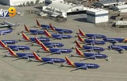 Hãng hàng không Mỹ di dời Boeing 737 Max