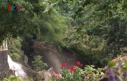 Suối Hoa - Vẻ đẹp của núi rừng