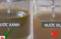 Phân biệt trà giảm cân chính hãng và trà nhái