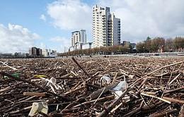 Chiến dịch rác thải tại Anh thu hút hơn nửa triệu người tham gia