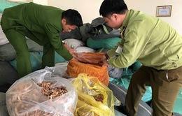 Hơn 7 tấn nguyên liệu thuốc bắc không rõ nguồn gốc bị thu giữ